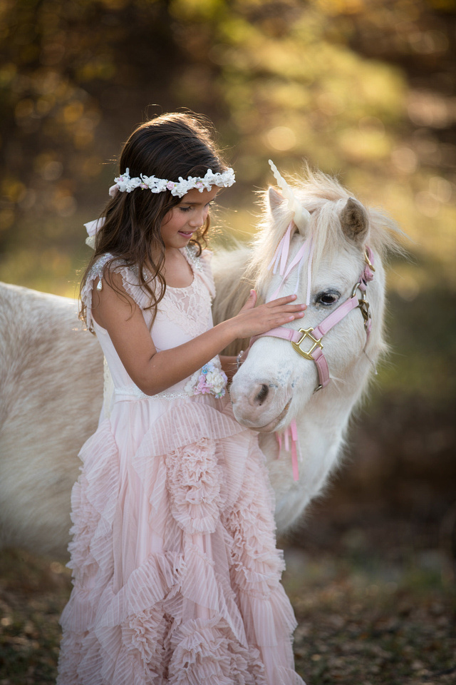 Fall unicorn portraits in dollcake gown in mansfield tx