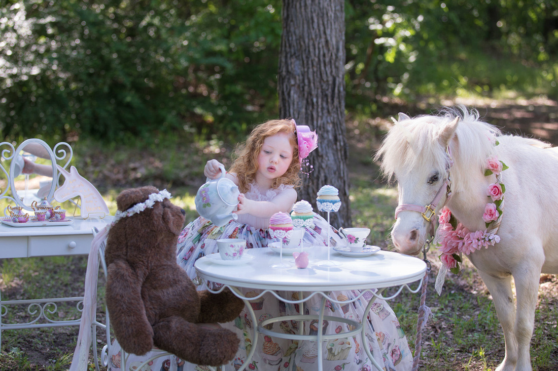 girl at tea party with a unicorn and bear portrait in mansfield tx