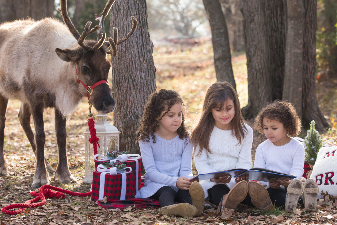 three siblings reading with a reindeer for a portrait