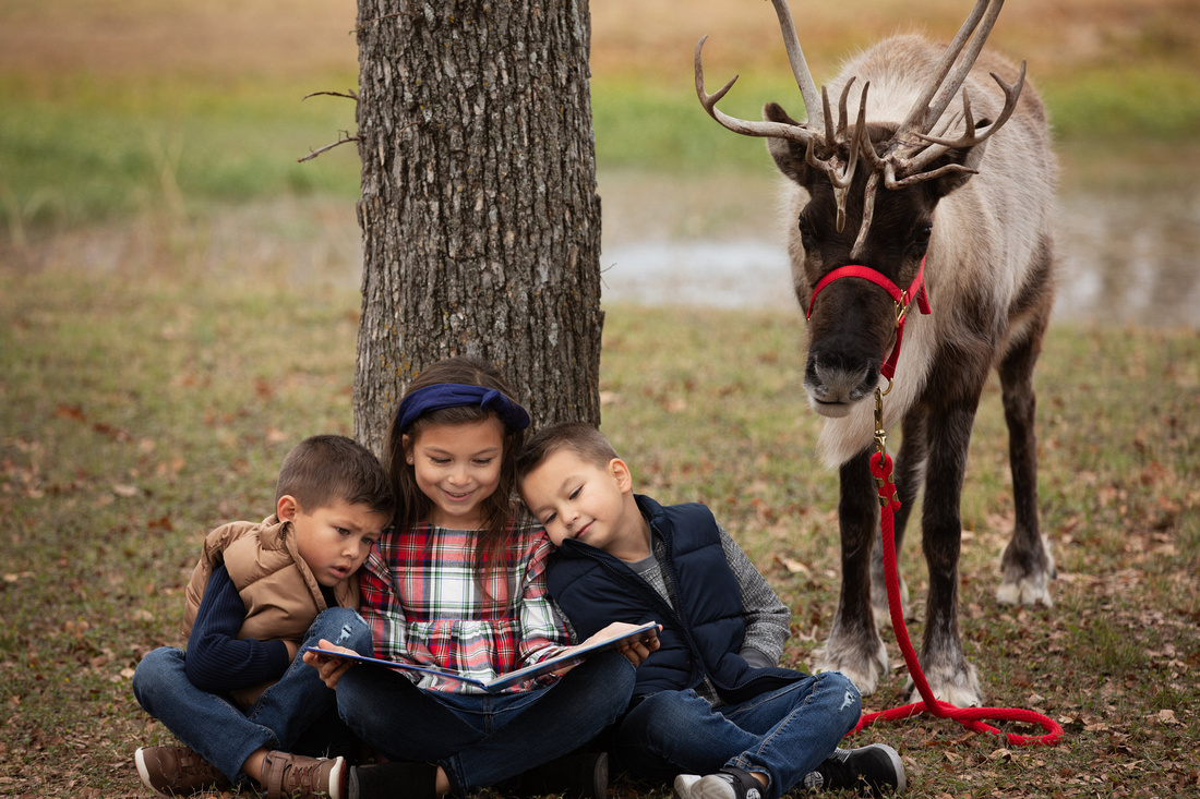 three sibling reading together with a reindeer by a tree